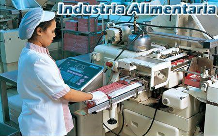 Esta carrera se puede desarrollar desde distintos ámbitos y uno de eso es la industria.