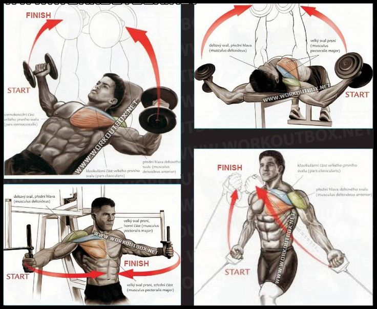 Chest workouts for mass!