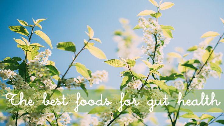 The best foods for gut health