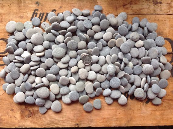 300 tiny Gray beach stone rounds Beach stones by MossBetweenMyToes