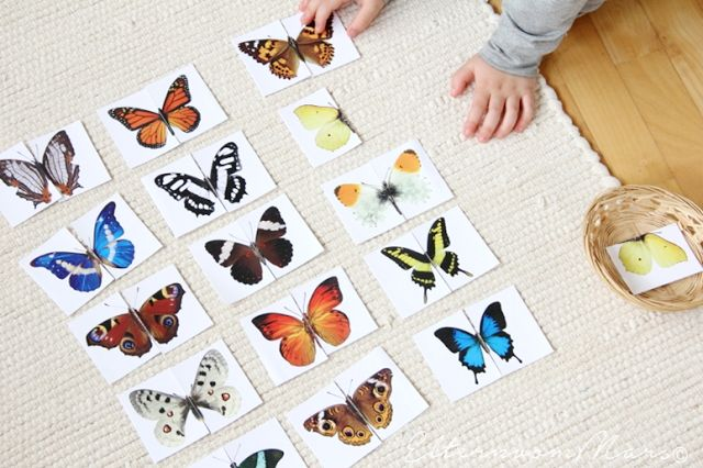 Free butterfly 2 piece matching cards from Eltern Von Mars.