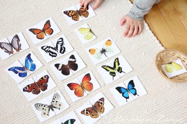 Montessori Sensorial Activity: Beautiful butterfly 2 piece matching cards from Eltern Von Mars.