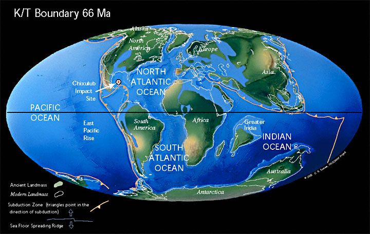 The bull's eye marks the location of the Chicxulub impact site. The impact of a 10 mile wide meteor caused global climate changes that killed the dinosaurs and many other forms of life. By the Late Cretaceous the oceans had widened, and India approached the southern margin of Asia. The Chicxulub crater is buried underneath the Yucatán Peninsula in Mexico, and occurred 65 million years ago at the Createceous-Tertiary (K-T) boundary.