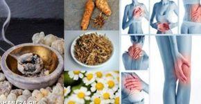 Αντικαταστήστε τα Παυσίπονα με αυτά τα 10 Βότανα χωρίς να έχετε Παρενέργειες!: http://biologikaorganikaproionta.com/health/247593/