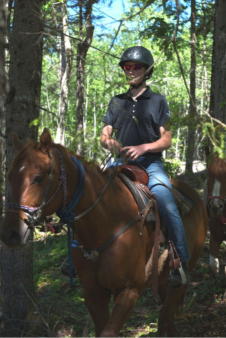 June 20, 2015. Summer Celebration Event. Evangeline Trail Rides provided their horses and expertise for guests at Forest Lakes Country Club.