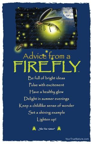"""Advice from a Firefly- """"Delight in Summer Evenings."""" Your True Nature"""