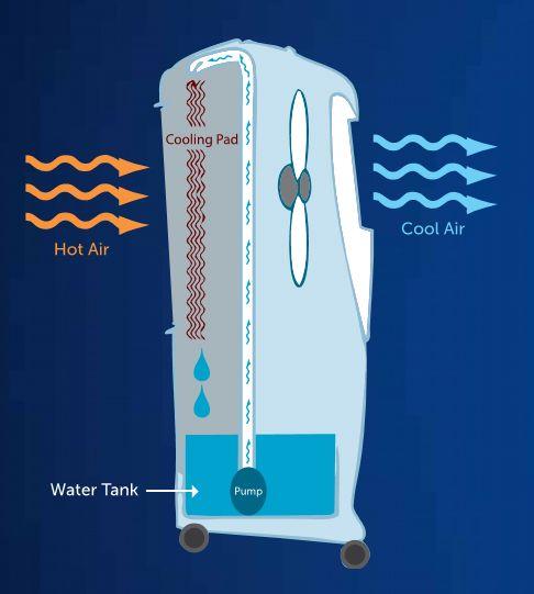 Cơ chế làm mát của máy làm mát không khí SYMPHONY xuất xứ Ấn Độ. Nhà sản xuất máy làm mát số 1 thế giới hiện nay. Hình ảnh mô tả: trao đổi nhiệt giữa không khí và nước tại giàn làm lạnh ( cooling pad ) máy làm mát.