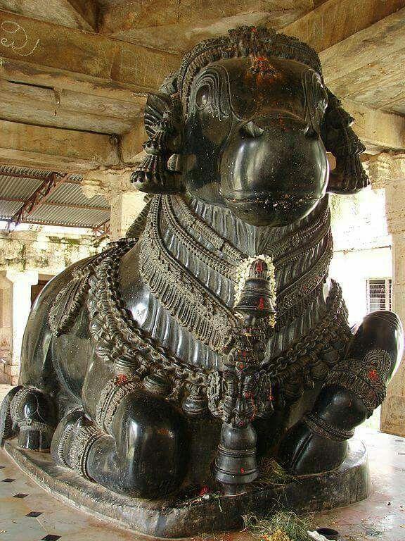 - Nandi ( basalt bull ) in Gangadeshvara Temple at Turvekere. India ./tcc/
