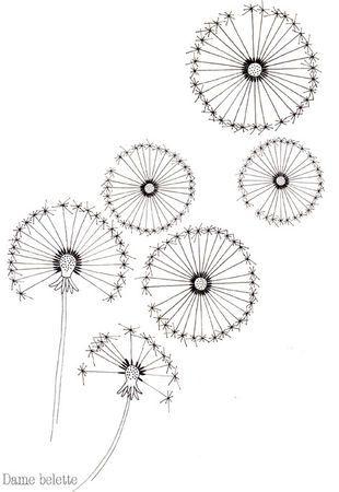 dandelion pen drawings :)