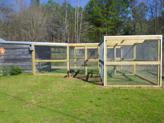 80 best chickens images on pinterest chicken coops for Enclosed chicken run plans