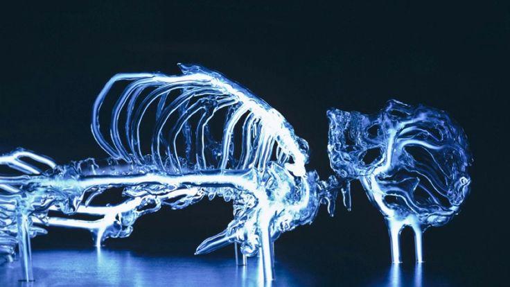 glass skeleton filled with krypton gas.