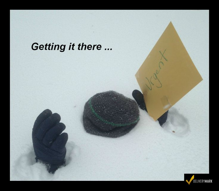 Snow, Rain, Shine, Cold, Heat … regardless of the weather… that paperwork has to get there! No excuses! - #humor #jokes #weather #snow #storm #blizzard #delivery #deliveries  #startups #Dispatcher #Broker  #freightforwarder #DeliveryMark #Couriers, #Hotshots, #Truckers,