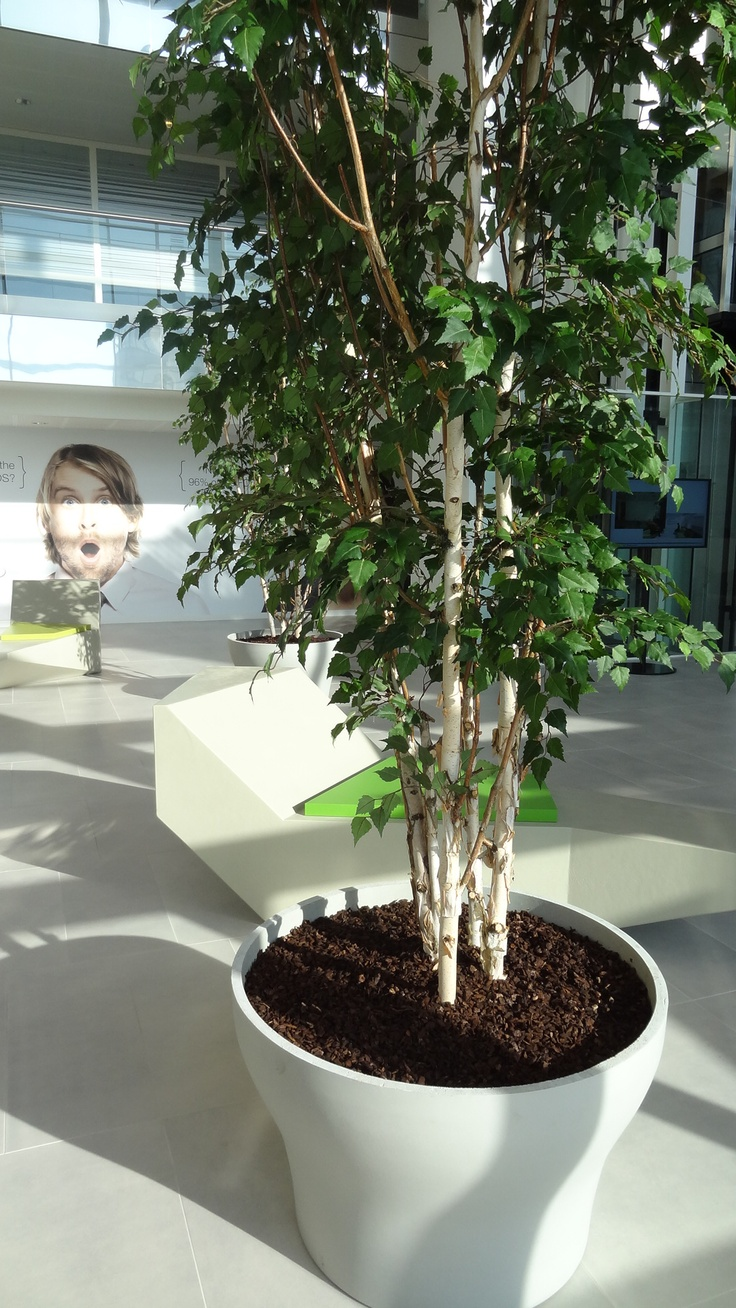 Polymer Concrete Planters Made By Potmaat The Netherlands.