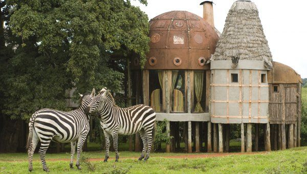 &Beyond Ngorongoro Crater Lodge in #Tanzania.