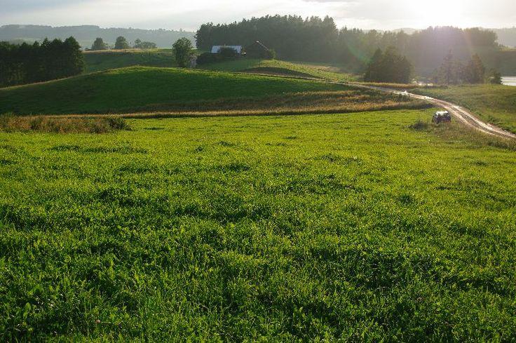 #Działka#Suwalski Park Krajobrazowy