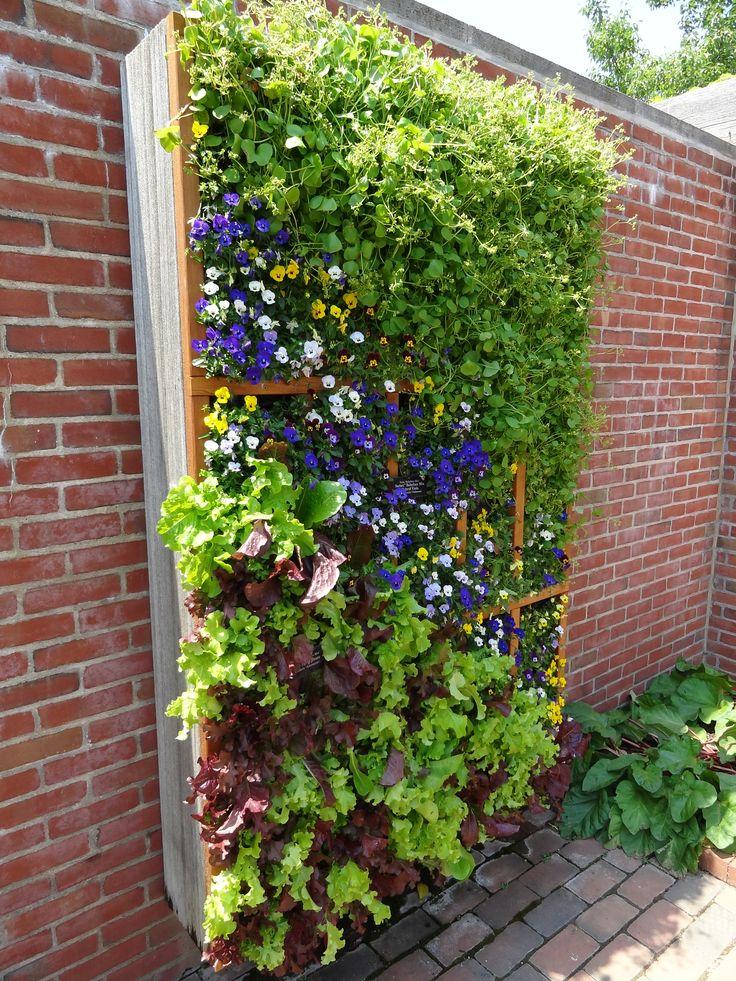 139 Best Vertical Gardens Amp Living Walls Images On