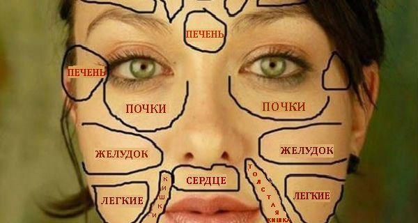 Ваше здоровье на китайской «карте лица» / Будьте здоровы