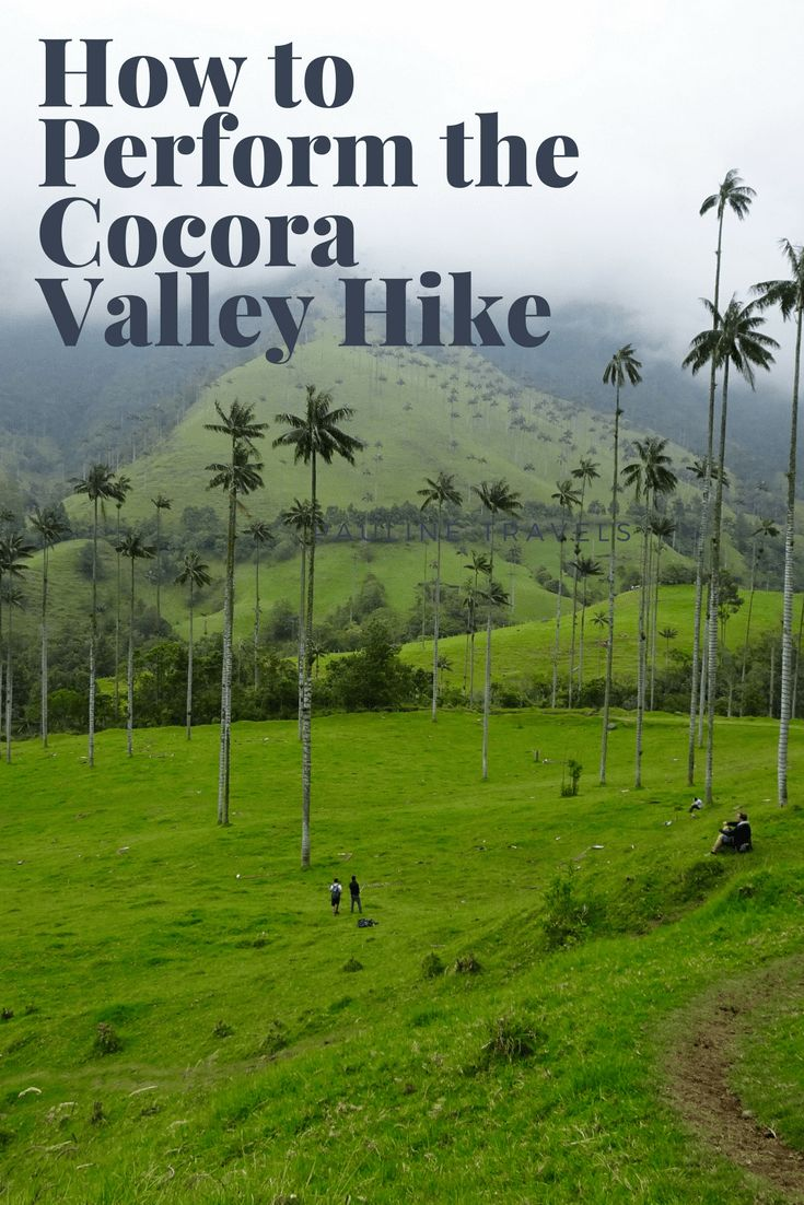 Cocora Valley Hike with the Worlds Tallest Palm Trees in Salento, Colombia can be done in many ways as it is with many tourist destinations. Which one is the correct way for you to perform? That depends on your goal for the trip in the Cocora valley. When it comes to perform the Cocora Valley hike you have two options; that can either be done by walking or horseback riding. There is the short option, and then there is the extended hiking version.