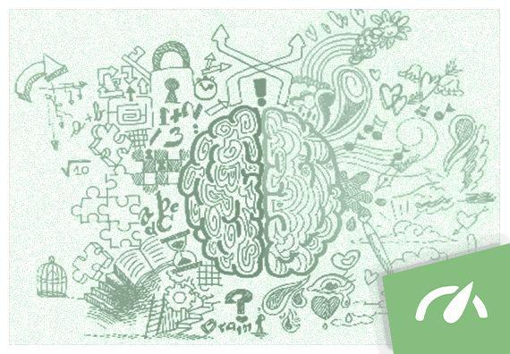 O estímulo do ambiente educacional é fator determinante na organização cerebral e, nesse sentido, a teoria das Inteligências Múltiplas tem muito a ensinar.
