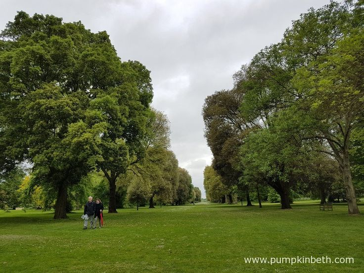 The Royal Botanic Gardens at Kew is a wonderful garden to visit at any time of year. A gift of membership to become a friend of kew would make a very special gift. Kew is open to visitors all year round. The gardens are open every day, except for the 24th and 25th December.
