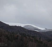 Bieszczada Mountains . Feb.03.2016. by © Andrzej Goszcz,M.D. Ph.D