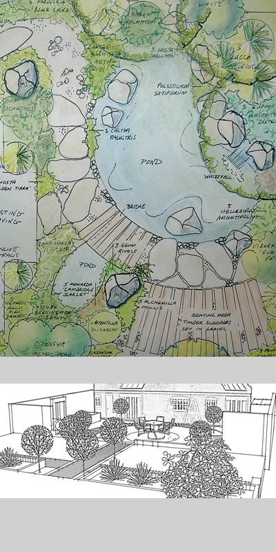 Garden survey and design drawings.  plan-view and 3d..by David Anderson design