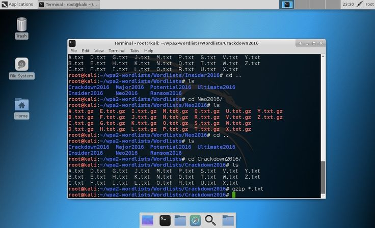 Download a collection of wpa2 word lists and passwords for dictionary-attacks using password cracking tools such as aircrack-ng, hydra and hashcat. #KaliLinux #wpa2