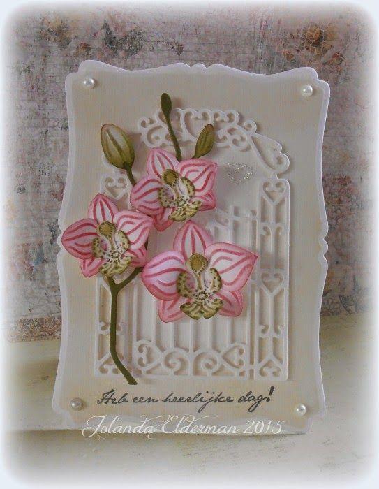 Hebben jullie de nieuwe orchideeën mal (COL1379) van Marianne design  al gezien. Ik vind deze helemaal geweldig. Je kunt steeds met andere k...