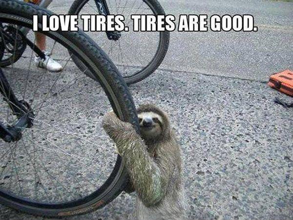 How I feel about my tri bike! Ha!!