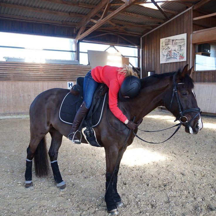 GOOD NIGHT#dylaras #RiderFashion #teamRF #love #lookatmyhorse #happybobbl #happyathlete #equineaccount #equinelife #equine #kepitalia #spooks #spooksriding #pikeurfashion #deniroboots #eskadron #eskadronsuchti #eskadronoutfits #dressur #dressage #dressurpferd #dressagehorse #dressurreiten #equestrians #equestrianblogger