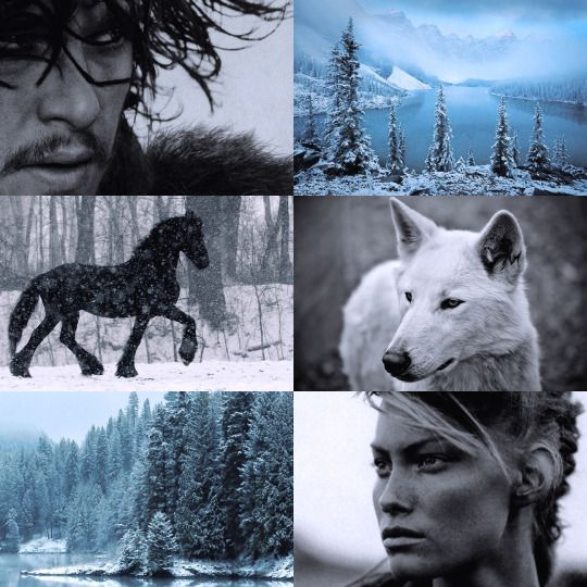 """"""" [The risk] is mine, Lord Snow. And I am no southron lady but a woman of the free folk. I know the forest better than all your black-cloaked rangers. It holds no ghosts for me. [….] You have my word, Lord Snow, I will return, with Tormund or without him. Look for me on the first day of the full moon"""""""