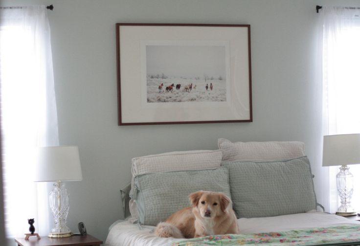 Master bedroom - benjamin moore's healing aloe paint color