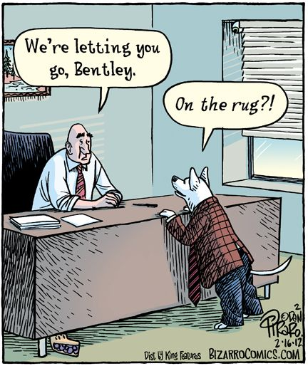 Quot We Re Letting You Go Bentley Quot Quot On The Rug Quot Bizarro