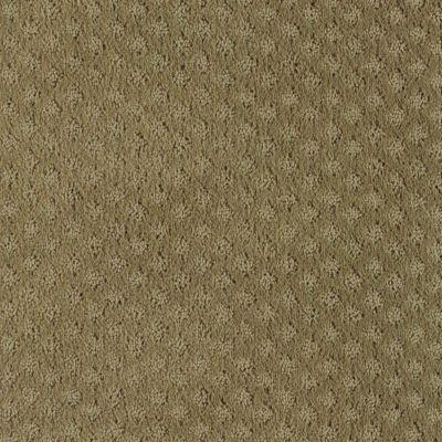 48 Best Images About Patterned Carpet On Pinterest