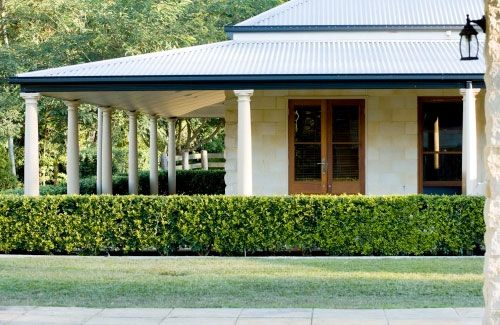 Hedge, verandah #Australian