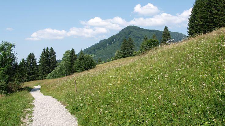 In und um die Stadt #Füssen im #Allgäu, finden Wanderer paradiesische Bedingungen vor. Unzählige bestens beschilderter Wanderwege für unterschiedlichste Ansprüche führen durch die faszinierende Landschaft mit ihren prächtigen Gipfeln, idyllischen Gewässern und zahlreichen Sehenswürdigkeiten.  http://www.hotel-fuessen.de/de/blog/fernwanderwege-um-die-stadt-fuessen.html