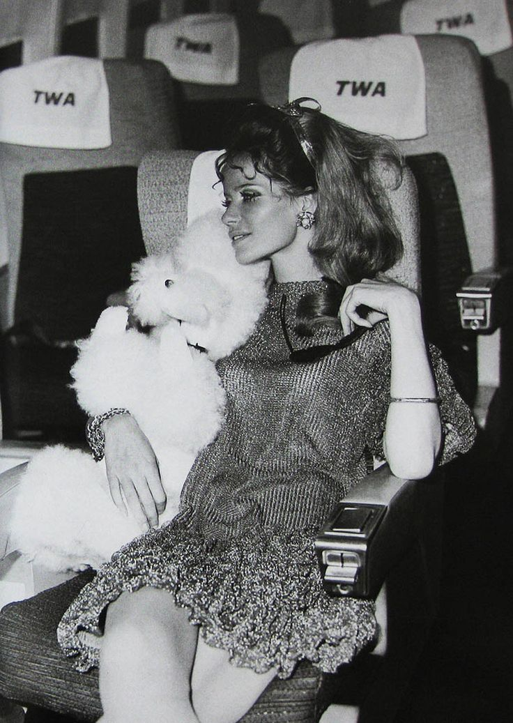 Veruschka aboard TWA with a cuddly friend
