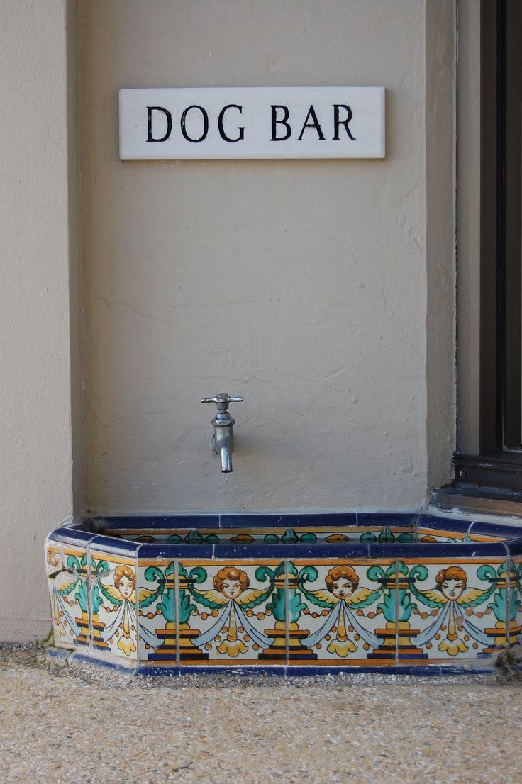 Pileta con llave para agua de los perros.