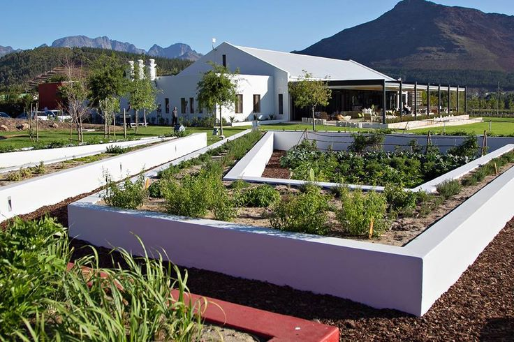 Leopard's Leap Wines - Franschoek- 5 minutes from La Clé des Montagnes- 4 luxurious villas on a working wine farm