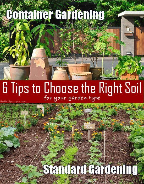 6 Tips to Choose the Right Soil for Your Garden Type