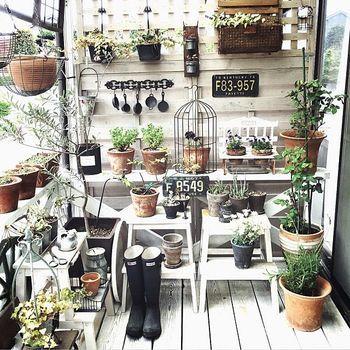 家庭菜園や、観葉植物の管理にはベランダは最適♪脚立や、すのこ風の壁を使って立体的に空間をうまく利用することがポイントです。