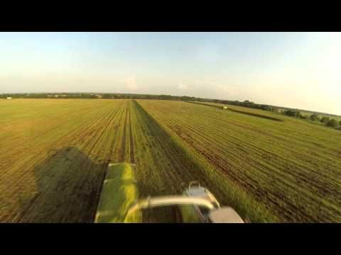 America the Beautiful: Video Texas Farming: Corn Silage Harvest filmed with Phantom 1 quadcopter and GoPro Hero 3.