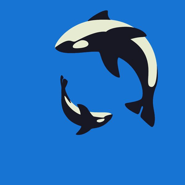 I pinned this GIF because  the animation is so smooth and the timing is perfect, when the whales roll around it seems they go a bit faster, I also think its clever that they are in sync so well,it also looks like the bigger whale hs been copied to make the smaller whale.