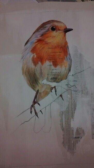 Bird art, wildlife, text in background Painted in gouache by Karolina Czerwinska