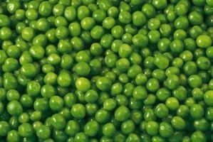How to Roast and Salt Green Peas