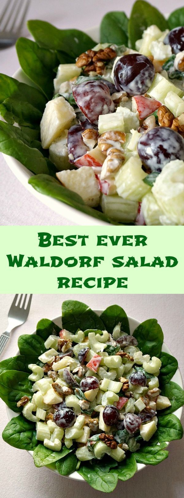 Make the best ever Waldorf salad with this recipe that includes a light yogurt and mayo dressing!