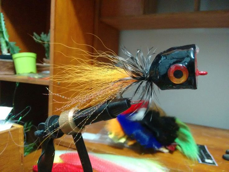 Fly fishing popper