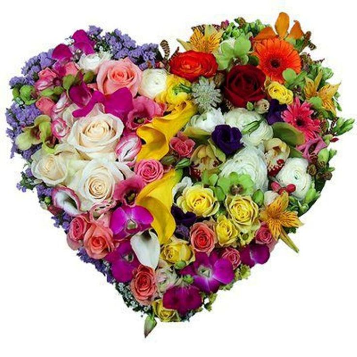 парашют цветы в виде картинок поможет