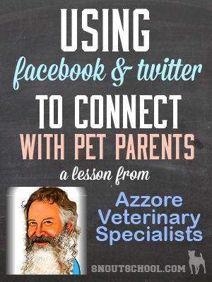 How Azzore Veterinary Specialists use Social Media to Connect with Pet Parents - awesome tips for vet techs & veterinarians - www.snoutschool.com