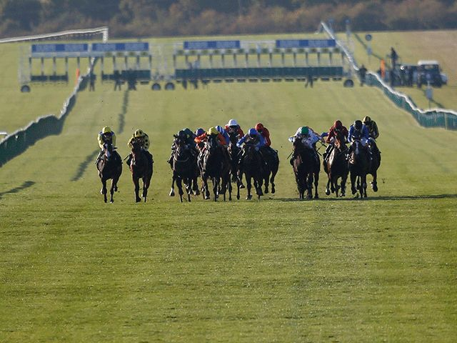 Yeomanstown Stud releases 2017 fees  https://www.racingvalue.com/yeomanstown-stud-releases-2017-fees/
